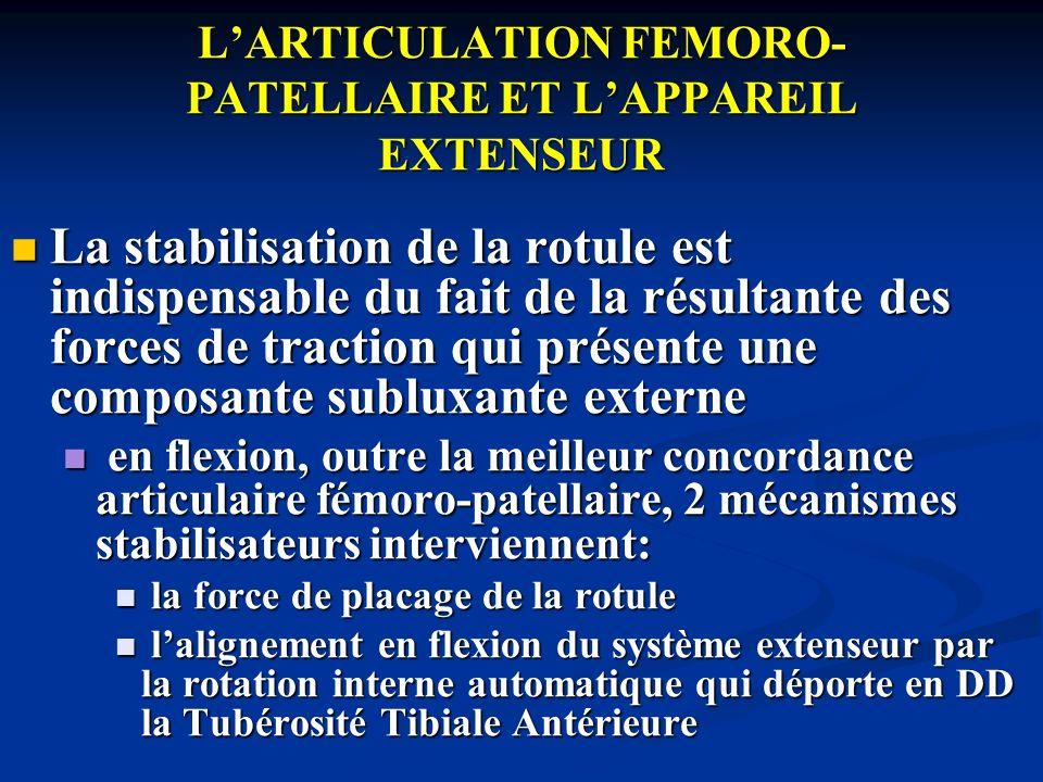 LARTICULATION FEMORO- PATELLAIRE ET LAPPAREIL EXTENSEUR La stabilisation de la rotule est indispensable du fait de la résultante des forces de tractio