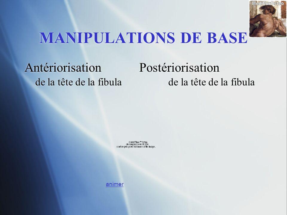 MANIPULATIONS DE BASE Antériorisation Postériorisation de la tête de la fibula Antériorisation Postériorisation de la tête de la fibula animer
