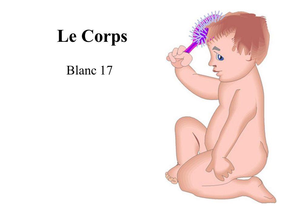 Les Parties du Corps le pied la jambe le genou la main le bras lépaule la tête le doigt le cou le ventre le dos
