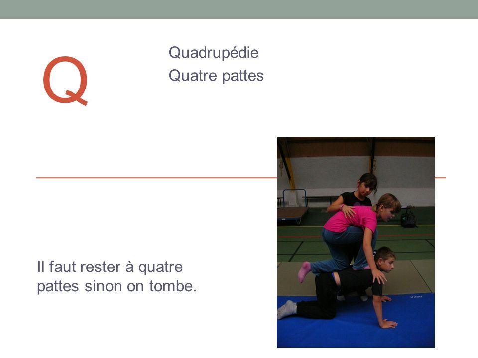 Q Quadrupédie Quatre pattes Il faut rester à quatre pattes sinon on tombe.