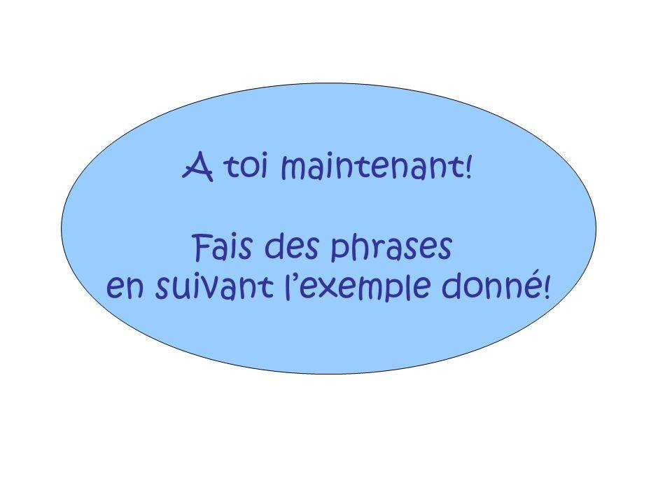A toi maintenant! Fais des phrases en suivant lexemple donné!