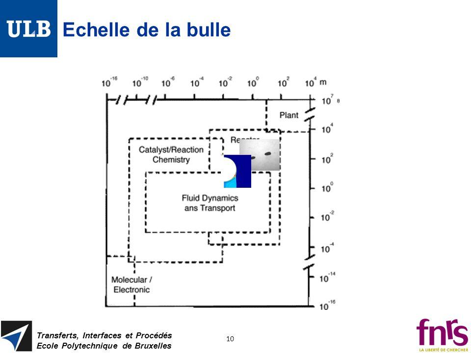 Echelle de la bulle Transferts, Interfaces et Procédés Ecole Polytechnique de Bruxelles 10