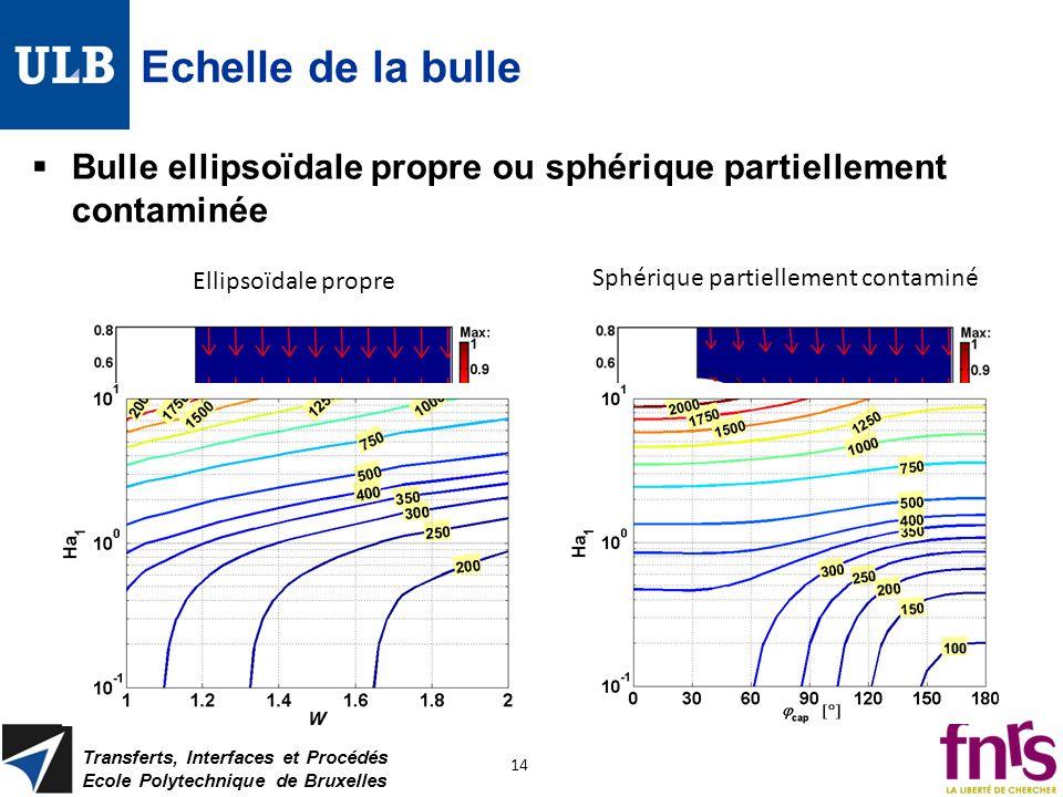 Echelle de la bulle Bulle ellipsoïdale propre ou sphérique partiellement contaminée Transferts, Interfaces et Procédés Ecole Polytechnique de Bruxelle