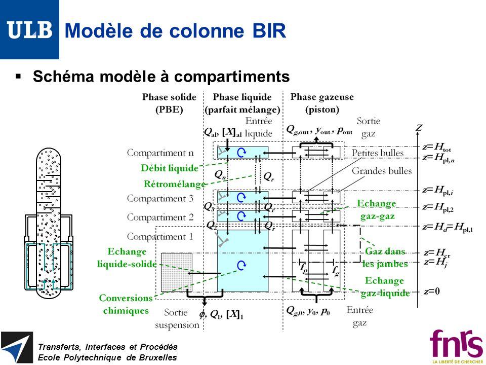 Modèle de colonne BIR Schéma modèle à compartiments Transferts, Interfaces et Procédés Ecole Polytechnique de Bruxelles