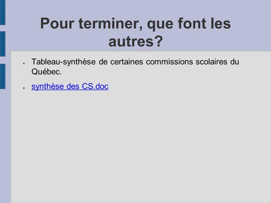 Pour terminer, que font les autres? Tableau-synthèse de certaines commissions scolaires du Québec. synthèse des CS.doc