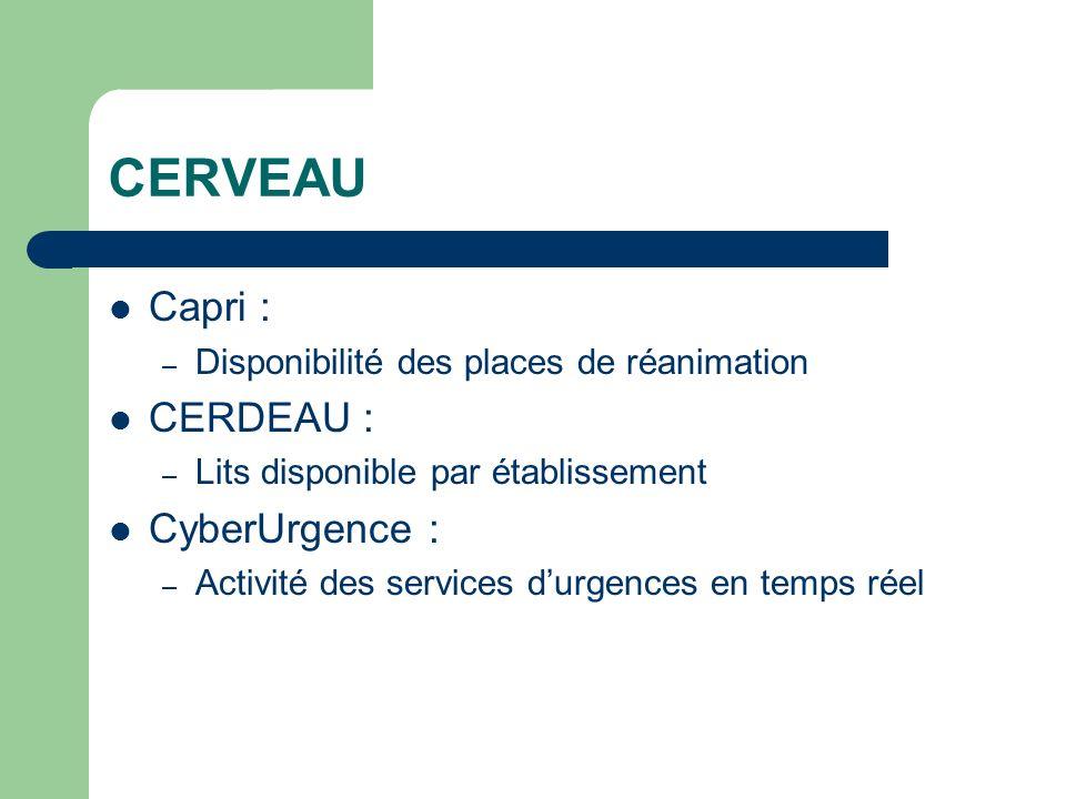 CERVEAU Capri : – Disponibilité des places de réanimation CERDEAU : – Lits disponible par établissement CyberUrgence : – Activité des services durgenc