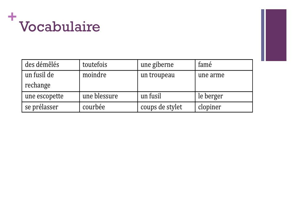 + Vocabulaire