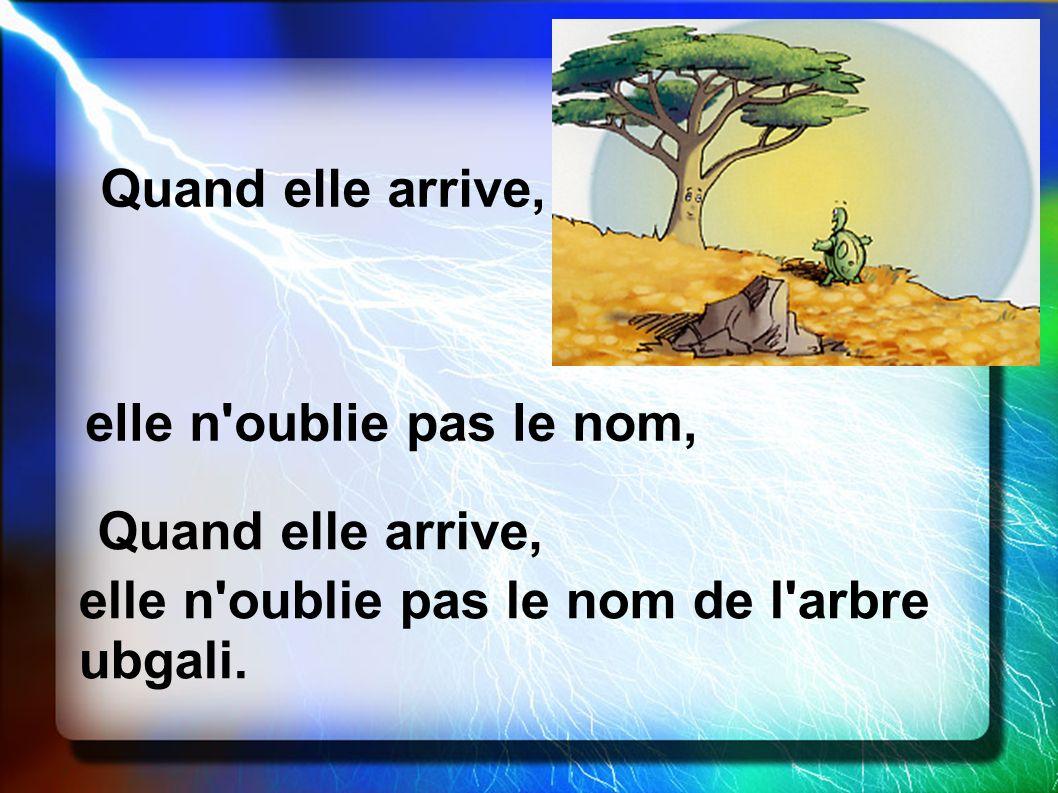 Quand elle arrive, elle n'oublie pas le nom, Quand elle arrive, elle n'oublie pas le nom de l'arbre ubgali.