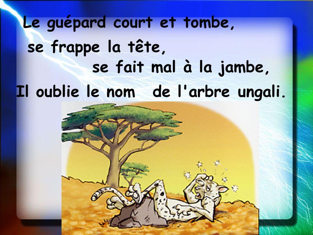 Le guépard court et tombe, se frappe la tête, se fait mal à la jambe, Il oublie le nomde l'arbre ungali.