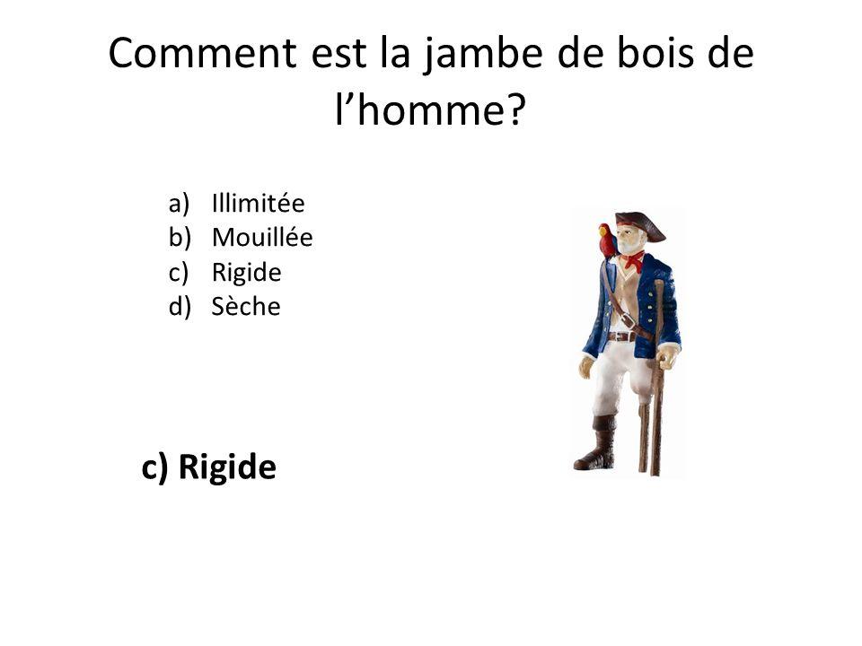 Comment est la jambe de bois de lhomme? a)Illimitée b)Mouillée c)Rigide d)Sèche c) Rigide