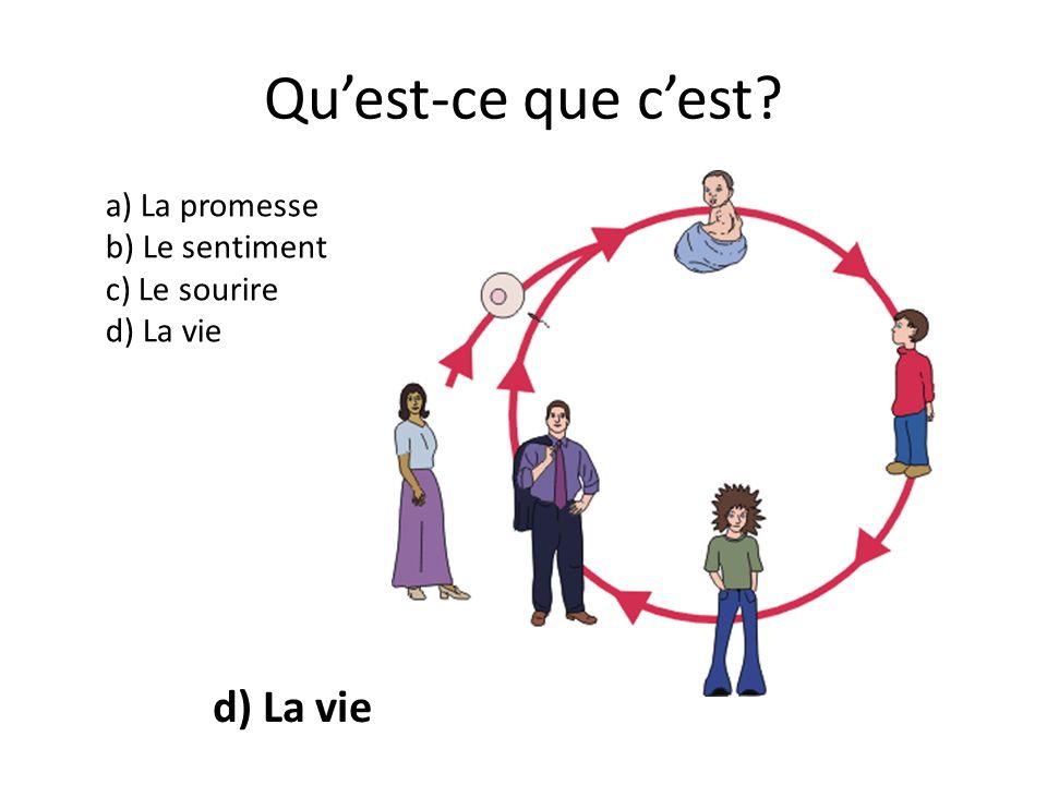Quest-ce que cest? a) La promesse b) Le sentiment c) Le sourire d) La vie d) La vie