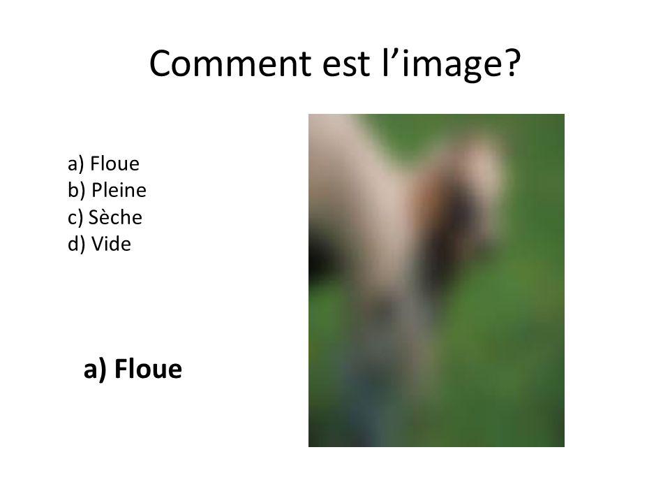 Comment est limage a) Floue b) Pleine c) Sèche d) Vide a) Floue