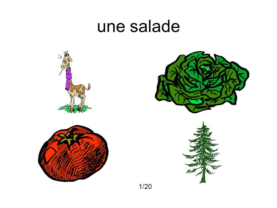 une salade 1/20