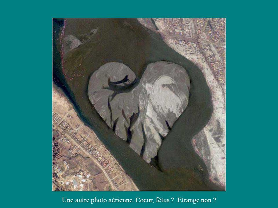 Une autre photo aérienne. Coeur, fétus ? Etrange non ?