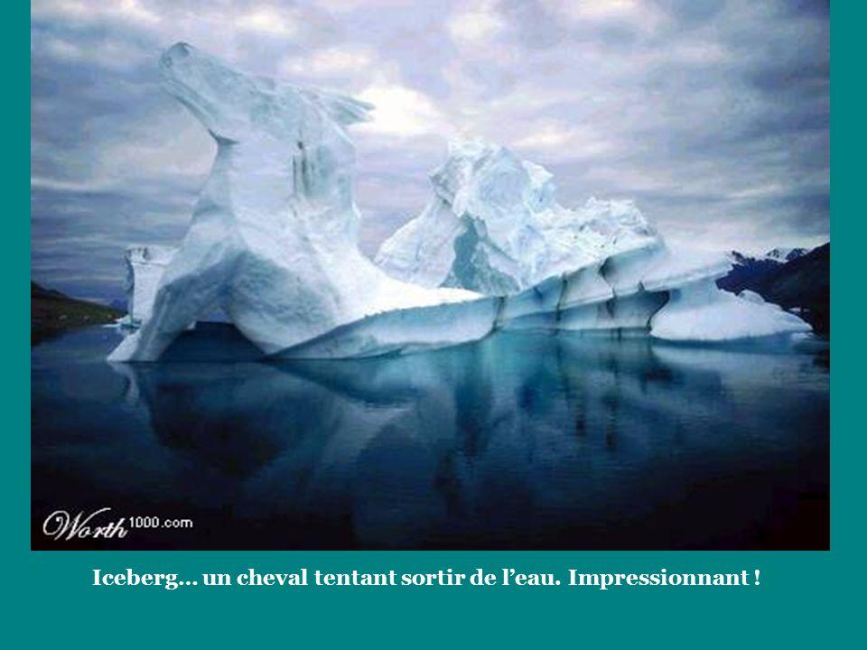 Iceberg… un cheval tentant sortir de leau. Impressionnant !