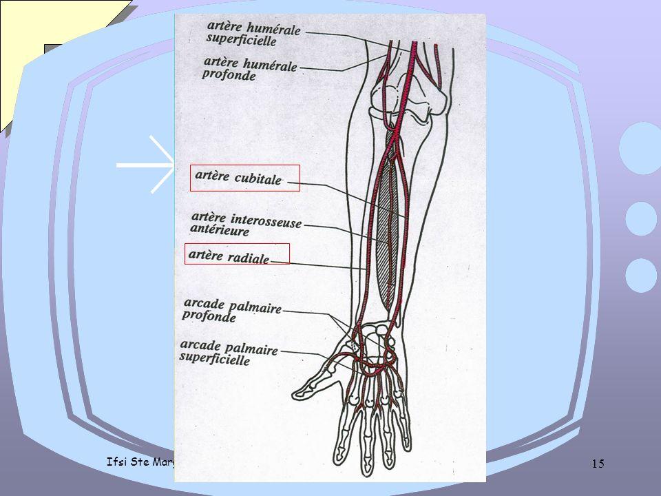 Ifsi Ste Marguerite - version 02 - PP - 2 ème année 14 préparation du patient vérifier identité du patient, test d'Allen perméabilité de l'artère cubi