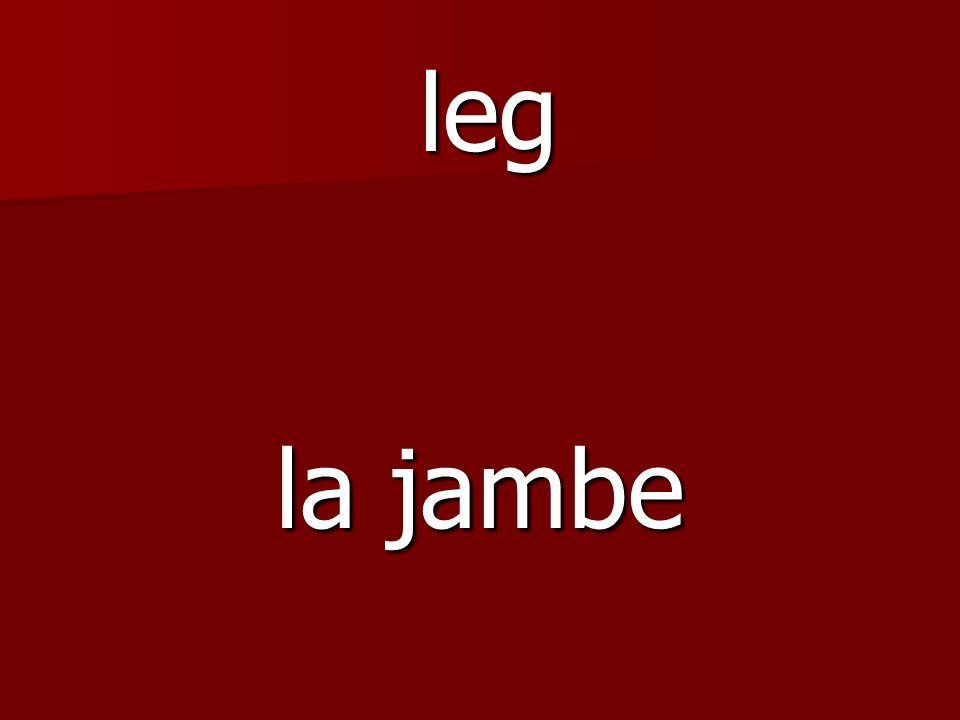 la jambe leg