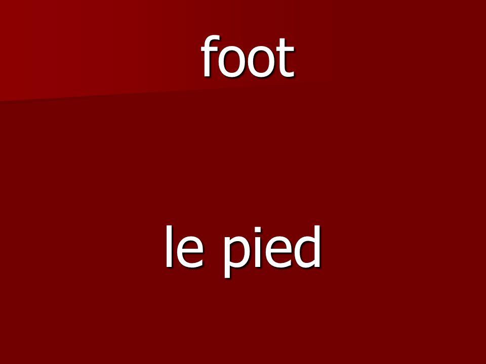 le pied foot