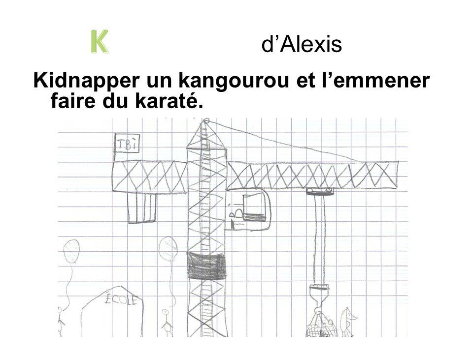 Kidnapper un kangourou et lemmener faire du karaté. dAlexis