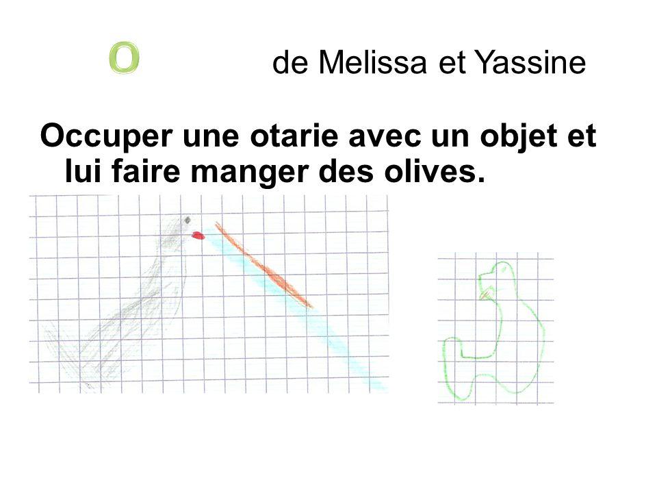 de Melissa et Yassine Occuper une otarie avec un objet et lui faire manger des olives.