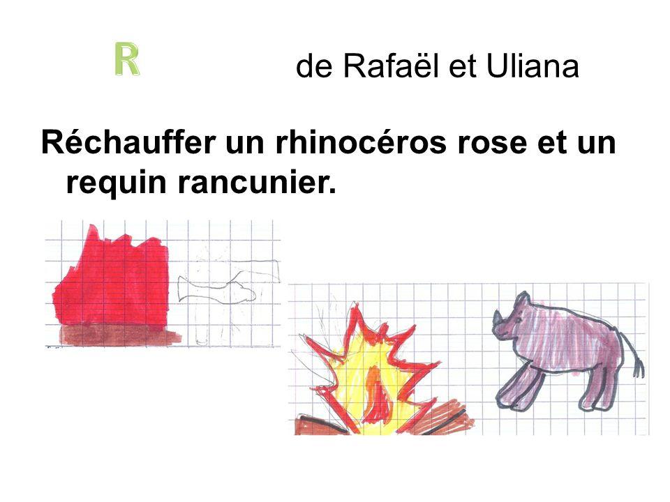 Réchauffer un rhinocéros rose et un requin rancunier. de Rafaël et Uliana