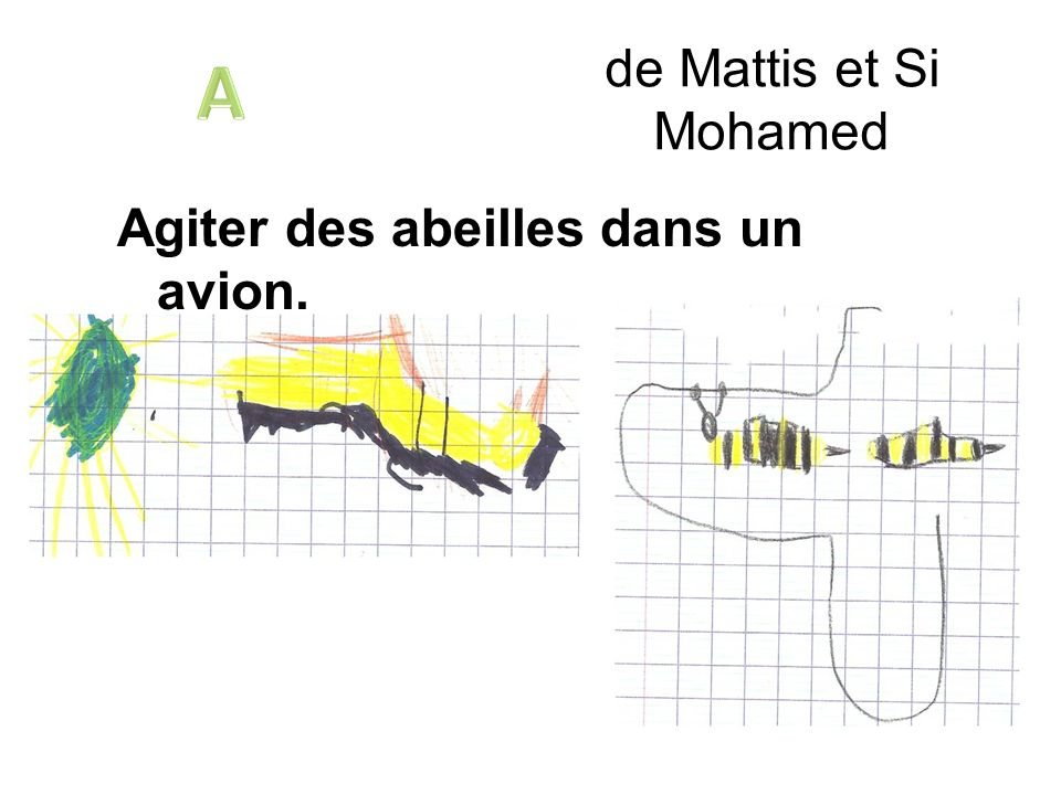de Mattis et Si Mohamed Agiter des abeilles dans un avion.