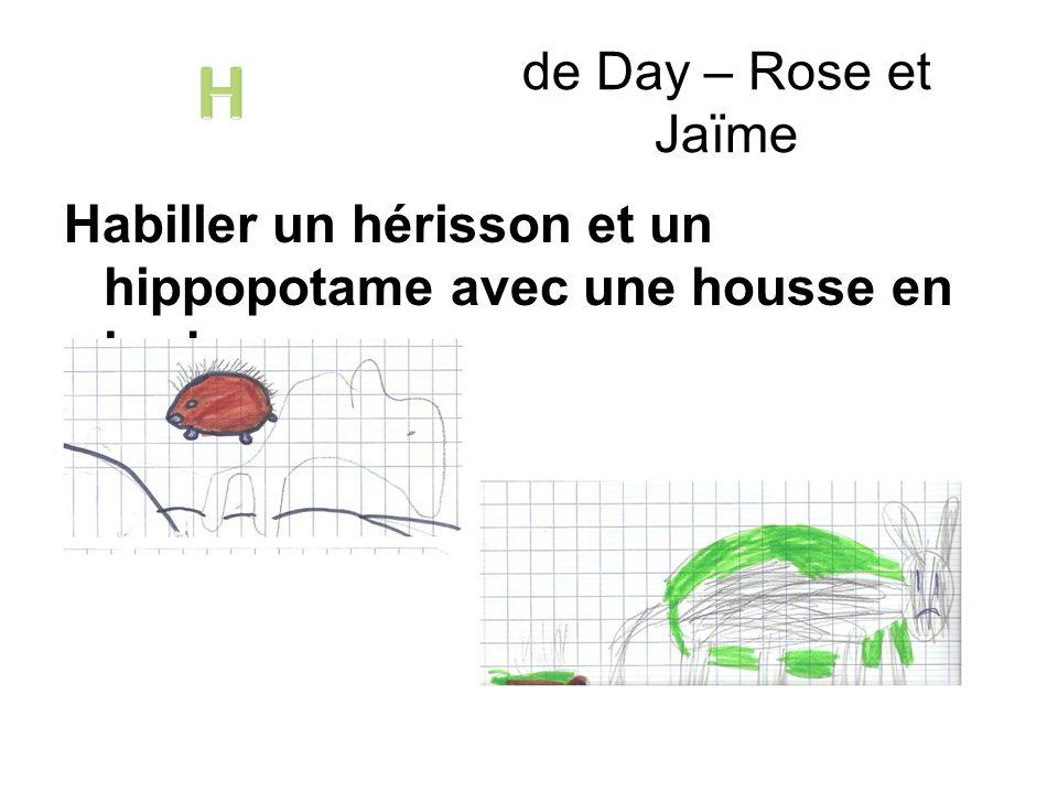 Habiller un hérisson et un hippopotame avec une housse en herbe. de Day – Rose et Jaïme
