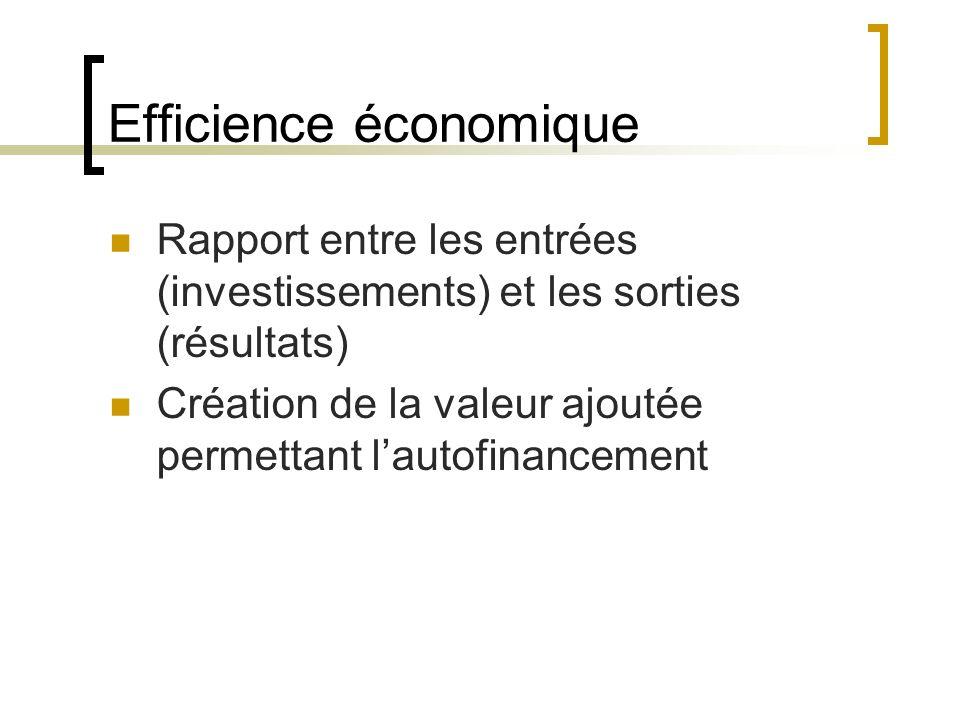 Efficience économique Rapport entre les entrées (investissements) et les sorties (résultats) Création de la valeur ajoutée permettant lautofinancement