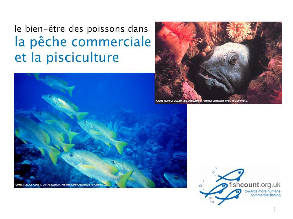 le bien-être des poissons dans la pêche commerciale et la pisciculture 1 Credit: National Oceanic and Atmospheric Administration/Department of Commerc