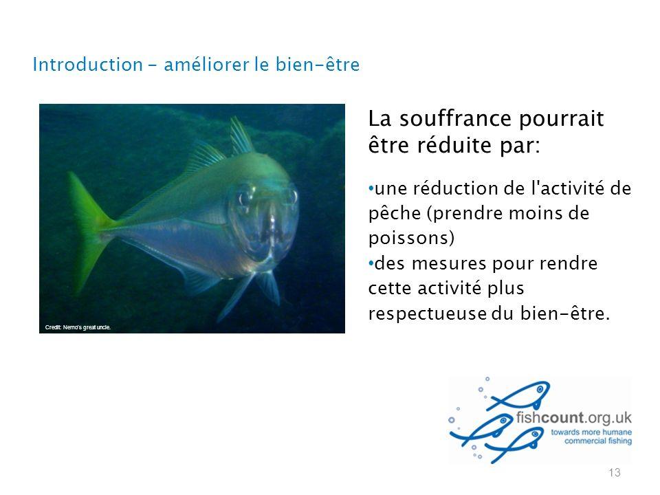La souffrance pourrait être réduite par: une réduction de l activité de pêche (prendre moins de poissons) des mesures pour rendre cette activité plus respectueuse du bien-être.