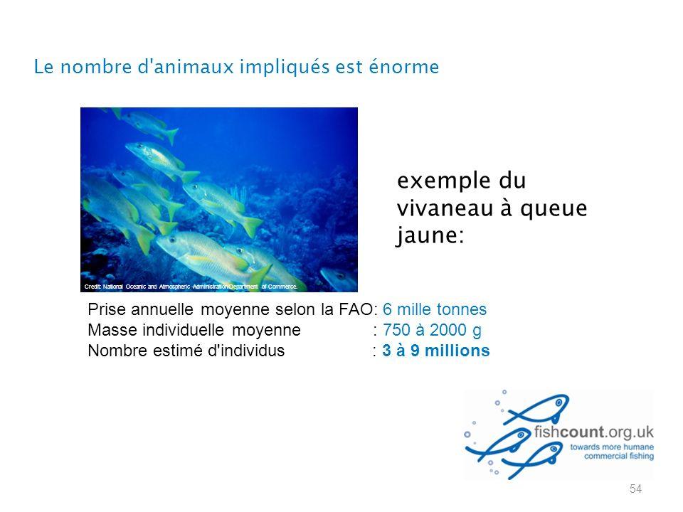 exemple du vivaneau à queue jaune: 54 Credit: National Oceanic and Atmospheric Administration/Department of Commerce. Le nombre d'animaux impliqués es