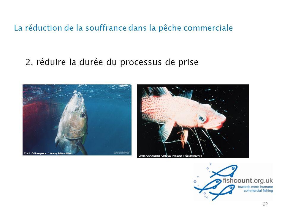 2. réduire la durée du processus de prise La réduction de la souffrance dans la pêche commerciale 62 Credit: © Greenpeace / Jeremy Sutton-Hibbert Cred