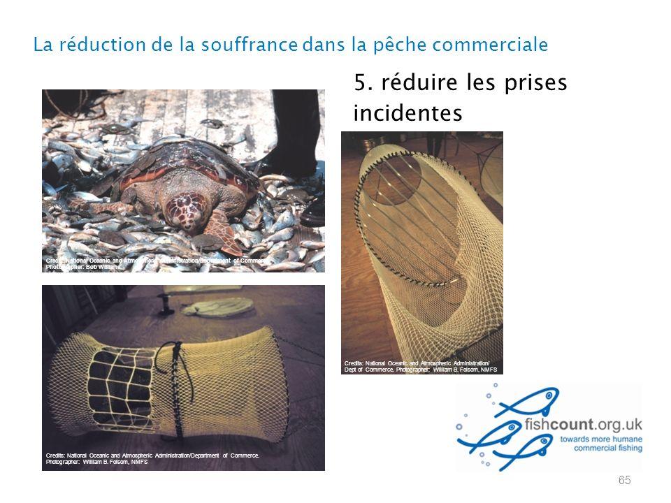 5. réduire les prises incidentes La réduction de la souffrance dans la pêche commerciale 65 Credits: National Oceanic and Atmospheric Administration/D