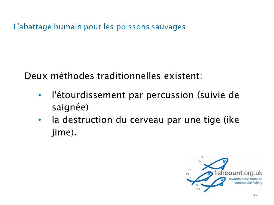L abattage humain pour les poissons sauvages Deux méthodes traditionnelles existent: l étourdissement par percussion (suivie de saignée) la destruction du cerveau par une tige (ike jime).