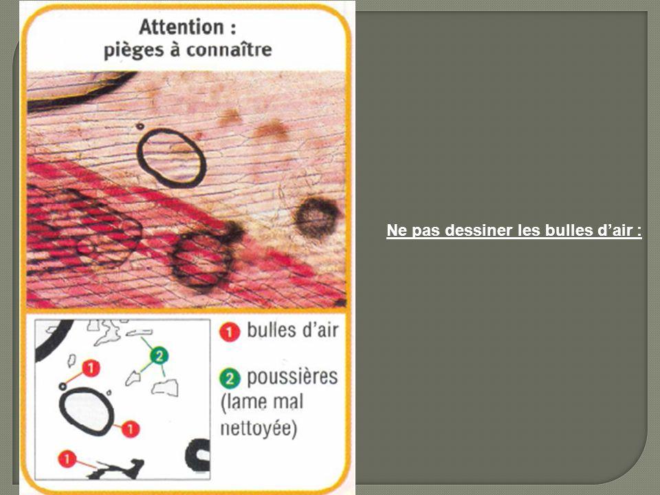 Ne pas dessiner les bulles dair :