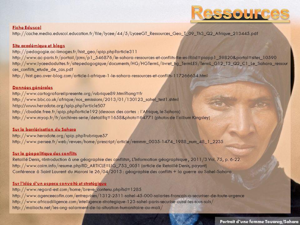 Fiche Eduscol http://cache.media.eduscol.education.fr/file/lycee/44/5/LyceeGT_Ressources_Geo_T_09_Th3_Q2_Afrique_213445.pdf Site académique et blogs h