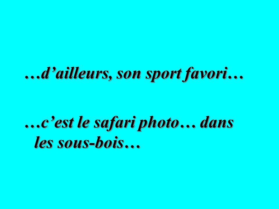 …dailleurs, son sport favori… …cest le safari photo… dans les sous-bois… …dailleurs, son sport favori… …cest le safari photo… dans les sous-bois…