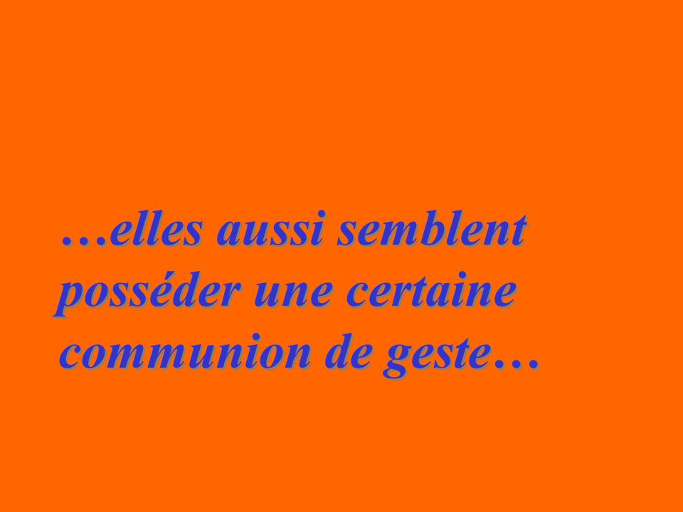 …elles aussi semblent posséder une certaine communion de geste… …elles aussi semblent posséder une certaine communion de geste…