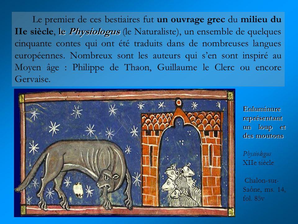 Une panthère Physiologus Angleterre, 3e quart du XIIIe siècle Paris, BNF, département des Manuscrits, Latin 3630, fol.