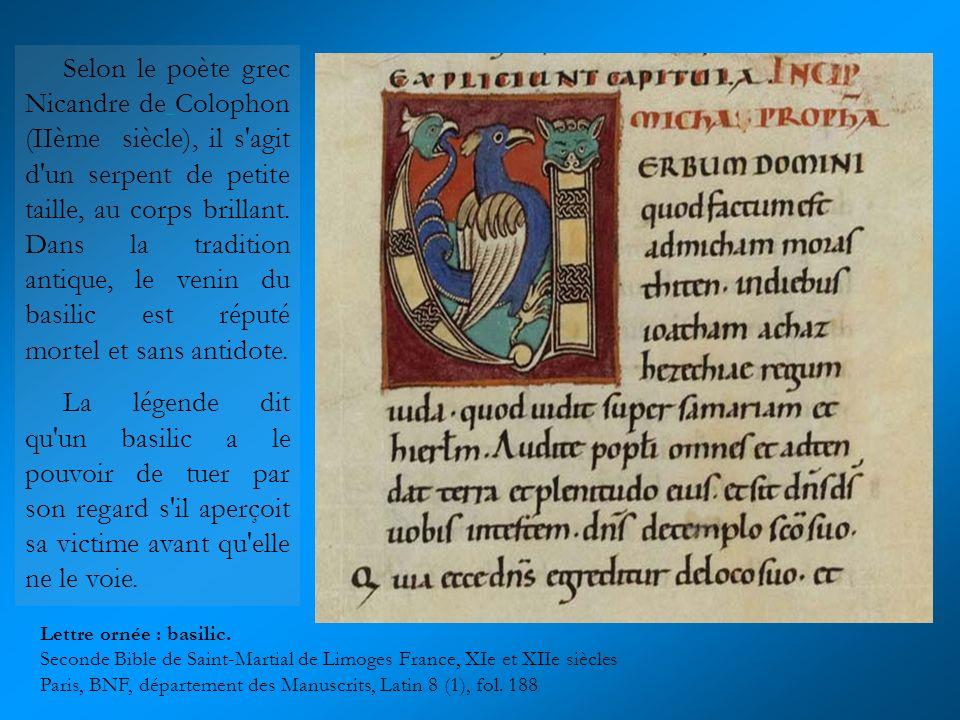 Le dragon est souvent mis en scène dans les textes médiévaux et dans les romans de chevalerie, notamment à travers des combats contre des chevaliers qui nhésitent pas à faire preuve de vaillance.