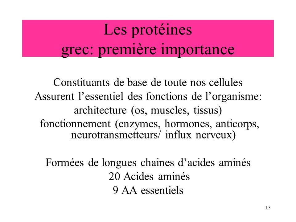 13 Les protéines grec: première importance Constituants de base de toute nos cellules Assurent lessentiel des fonctions de lorganisme: architecture (o