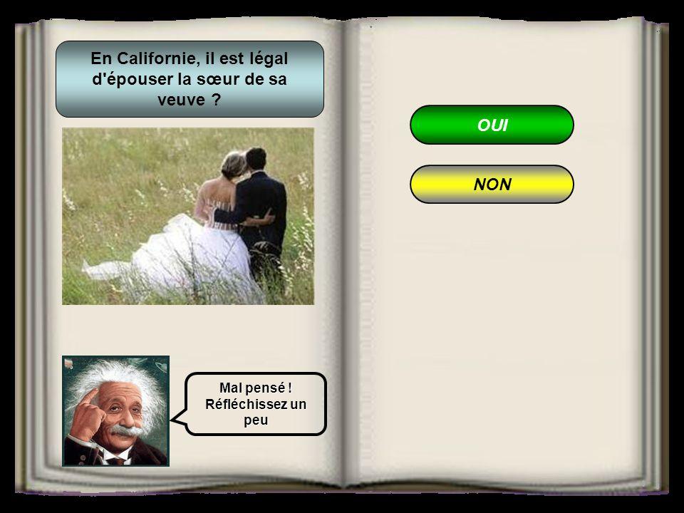 OUI NON En Californie, il est légal d épouser la sœur de sa veuve ? Mal pensé ! Réfléchissez un peu