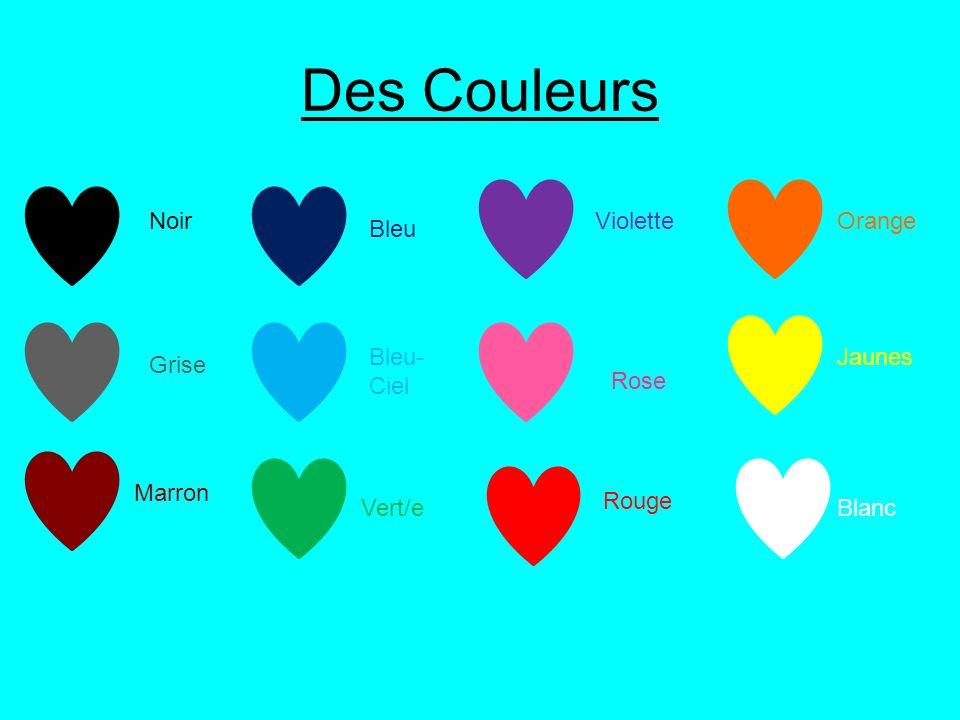 Des Couleurs Jaunes Rouge NoirVioletteOrange Rose Vert/e Bleu- Ciel Bleu Blanc Grise Marron