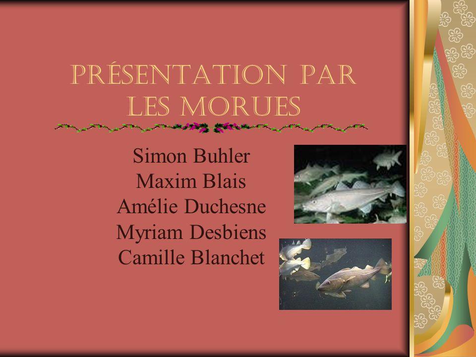 Présentation par Les Morues Simon Buhler Maxim Blais Amélie Duchesne Myriam Desbiens Camille Blanchet