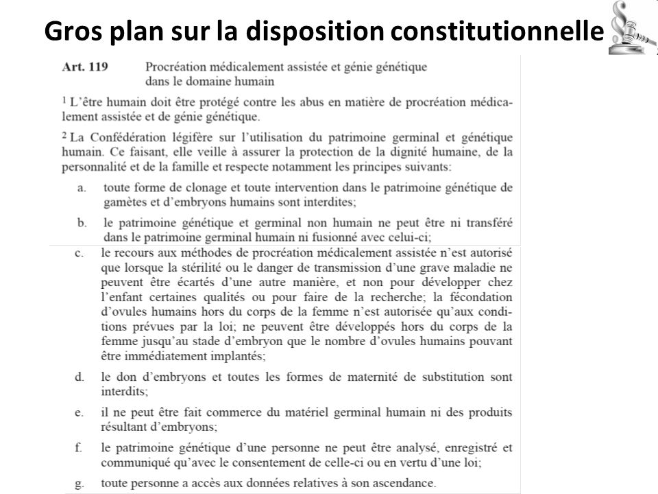 Gros plan sur la disposition constitutionnelle