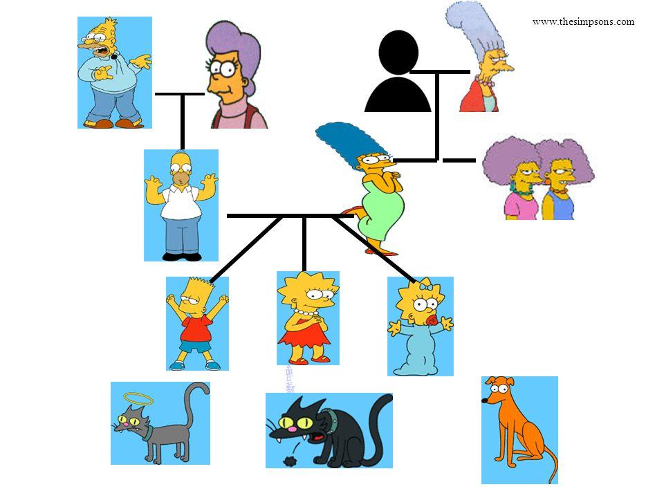 AbrahamAbraham MonaMona FatherFather JackieJackie HomerHomer MargeMarge www.thesimpsons.com