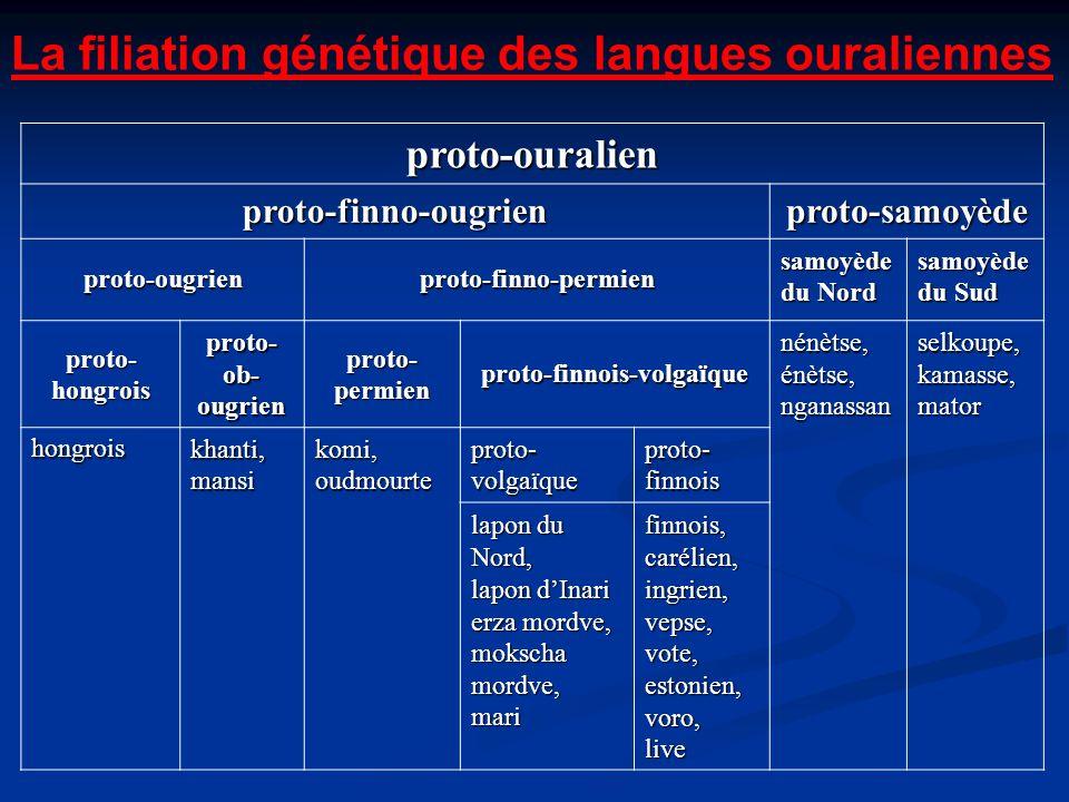 La filiation génétique des langues ouraliennes proto-ouralien proto-finno-ougrienproto-samoyède proto-ougrienproto-finno-permien samoyède du Nord samo