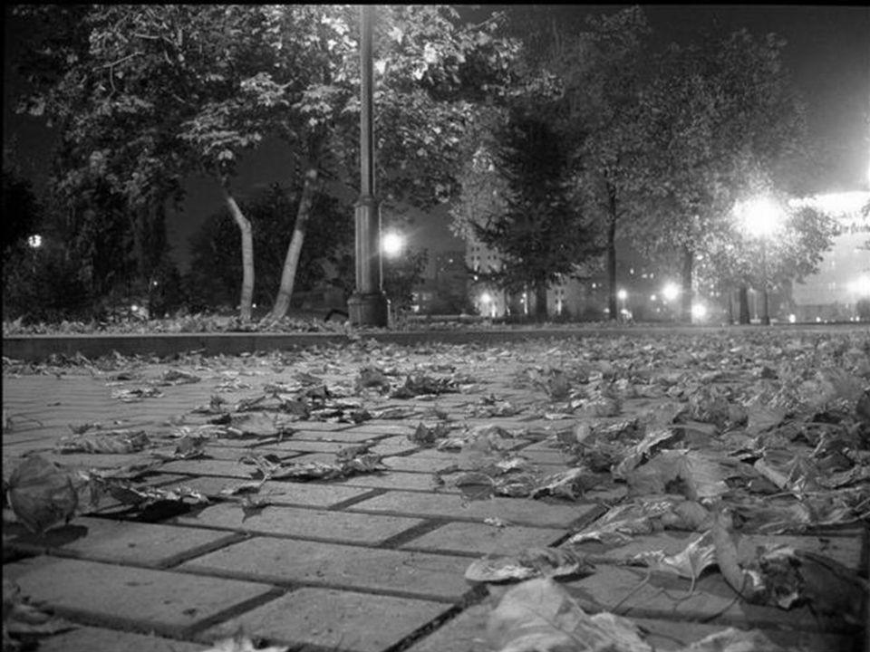 Dans les vallées Au cœur saignant Taches rouillées Feuilles de sang, Les feuilles mortes, Les souvenirs Vont en cohorte Semblant s'unir.