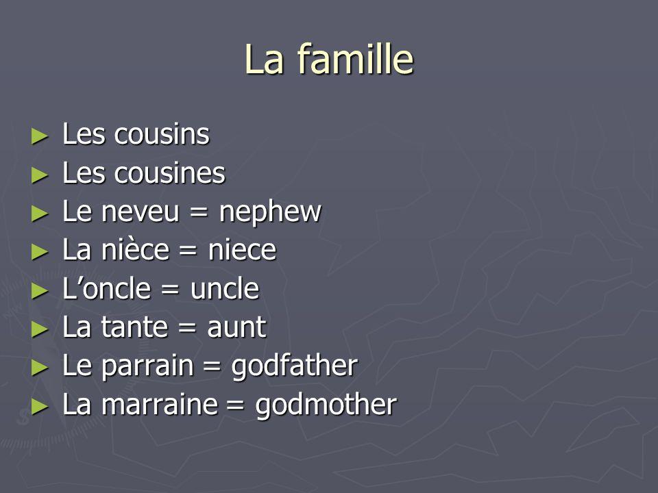 La famille Les cousins Les cousins Les cousines Les cousines Le neveu = nephew Le neveu = nephew La nièce = niece La nièce = niece Loncle = uncle Lonc