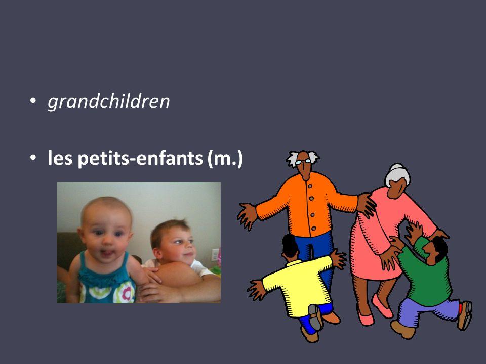 grandchildren les petits-enfants (m.)